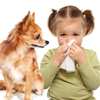 pet-allergies1