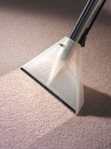 Numatic Wet/Dry Vacuum Cleaners for deep carpet cleaning!