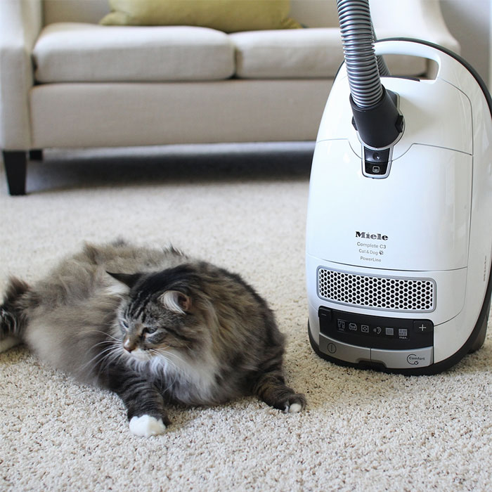Pro Steamer Carpet Cleaner Images X3 Cleaning Machine On