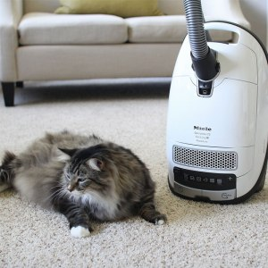 0086020_miele-cat-and-dog-complete-c3-vacuum