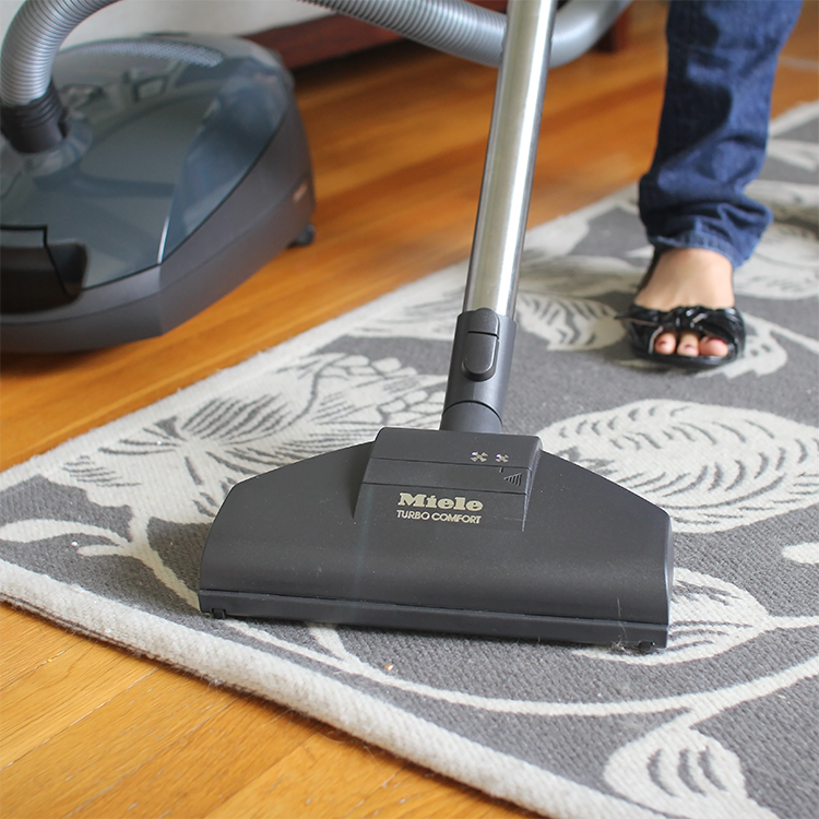Best Pet Vacuums For Bed Bugs